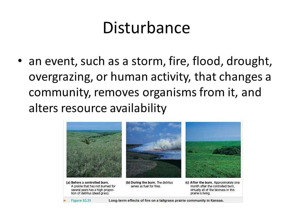 Disturbance an event, such as a storm, fire, flood, drought, overgrazing, or human activity, that changes a community, removes organisms from it, and alters resource availability