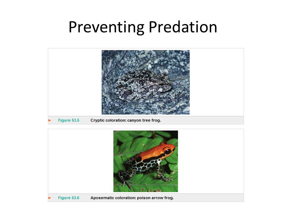 Preventing Predation