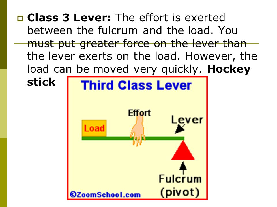  Class 3 Lever: The effort is exerted between the fulcrum and the load.