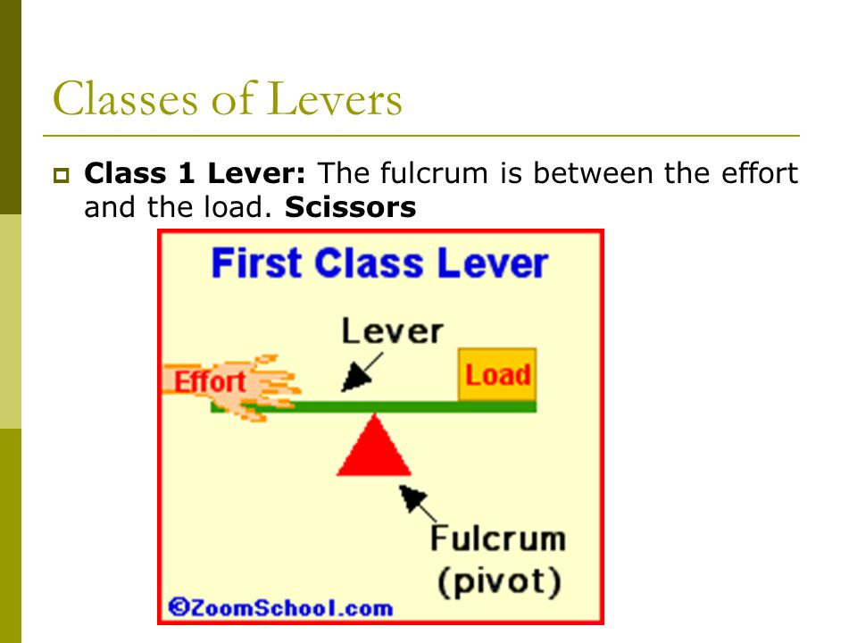Classes of Levers  Class 1 Lever: The fulcrum is between the effort and the load. Scissors