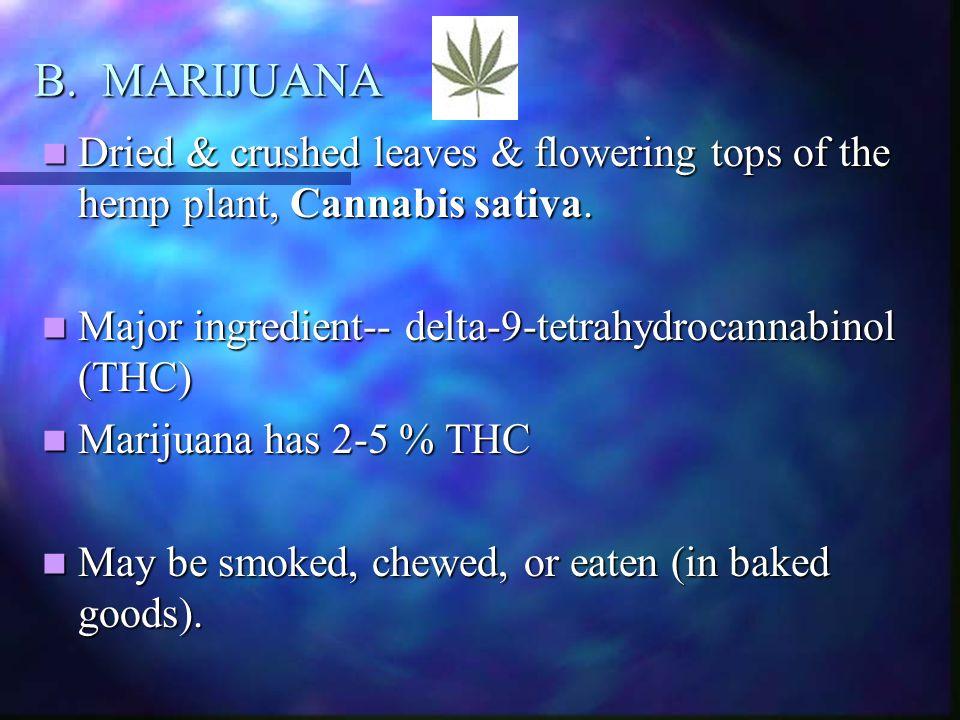 B. MARIJUANA Dried & crushed leaves & flowering tops of the hemp plant, Cannabis sativa. Dried & crushed leaves & flowering tops of the hemp plant, Ca