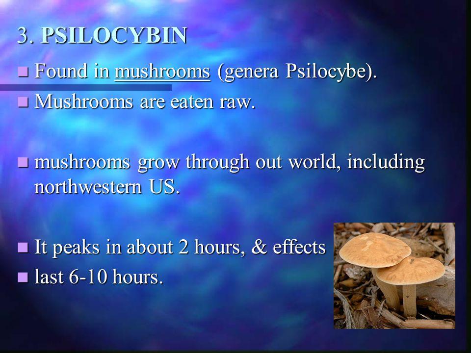 3. PSILOCYBIN Found in mushrooms (genera Psilocybe). Found in mushrooms (genera Psilocybe). Mushrooms are eaten raw. Mushrooms are eaten raw. mushroom