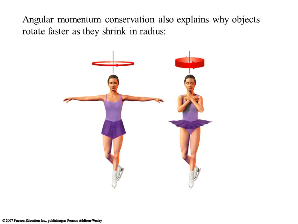 Angular momentum conservation also explains why objects rotate faster as they shrink in radius: