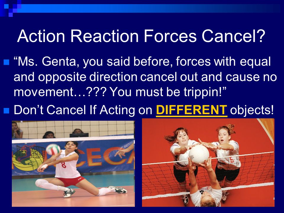 "Action Reaction Forces Cancel? ""Ms. Genta, you said before, forces with equal and opposite direction cancel out and cause no movement…??? You must be"