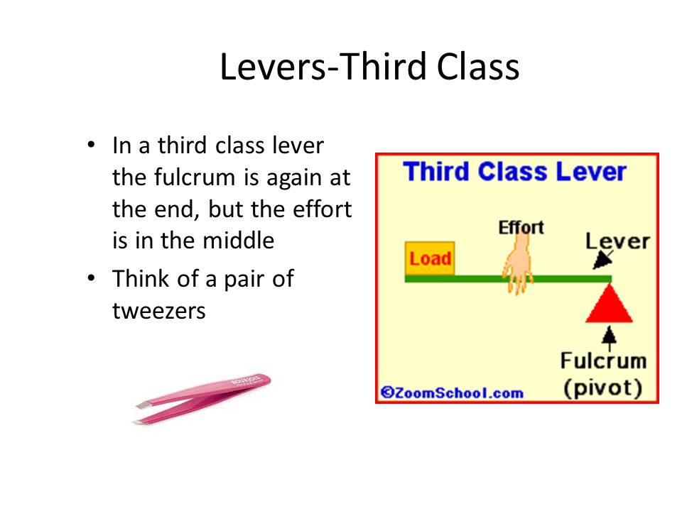 Levers-Third Class In a third class lever the fulcrum is again at the end, but the effort is in the middle Think of a pair of tweezers