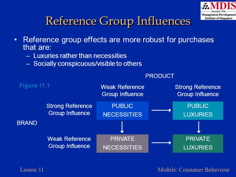 Lesson 11Module: Consumer Behaviour When Reference Groups Are Important Social power: capacity to alter the actions of others –Referent power –Information power –Legitimate power –Expert power –Reward power –Coercive power