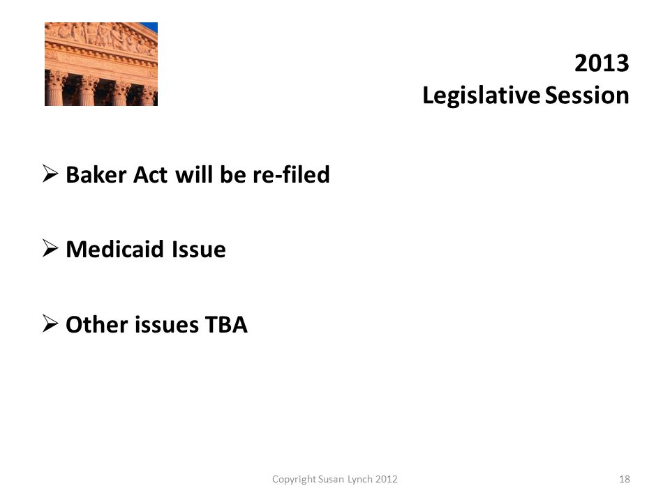 2013 Legislative Session  Baker Act will be re-filed  Medicaid Issue  Other issues TBA Copyright Susan Lynch 201218