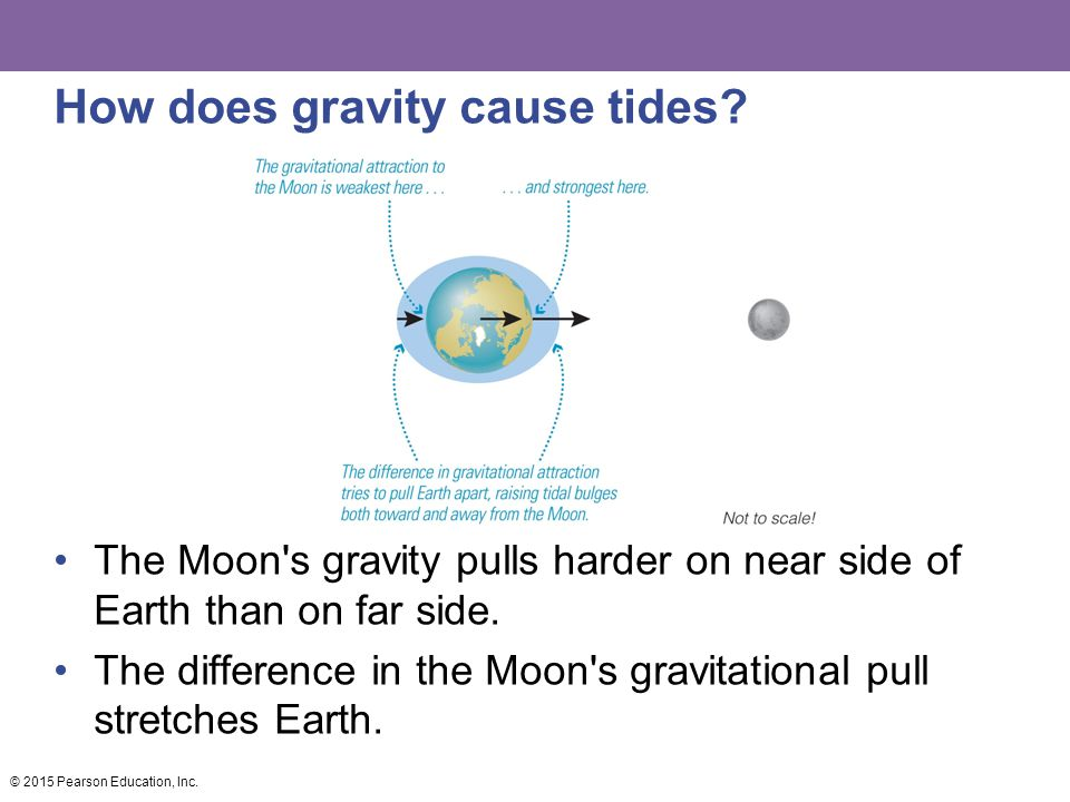 How does gravity cause tides.