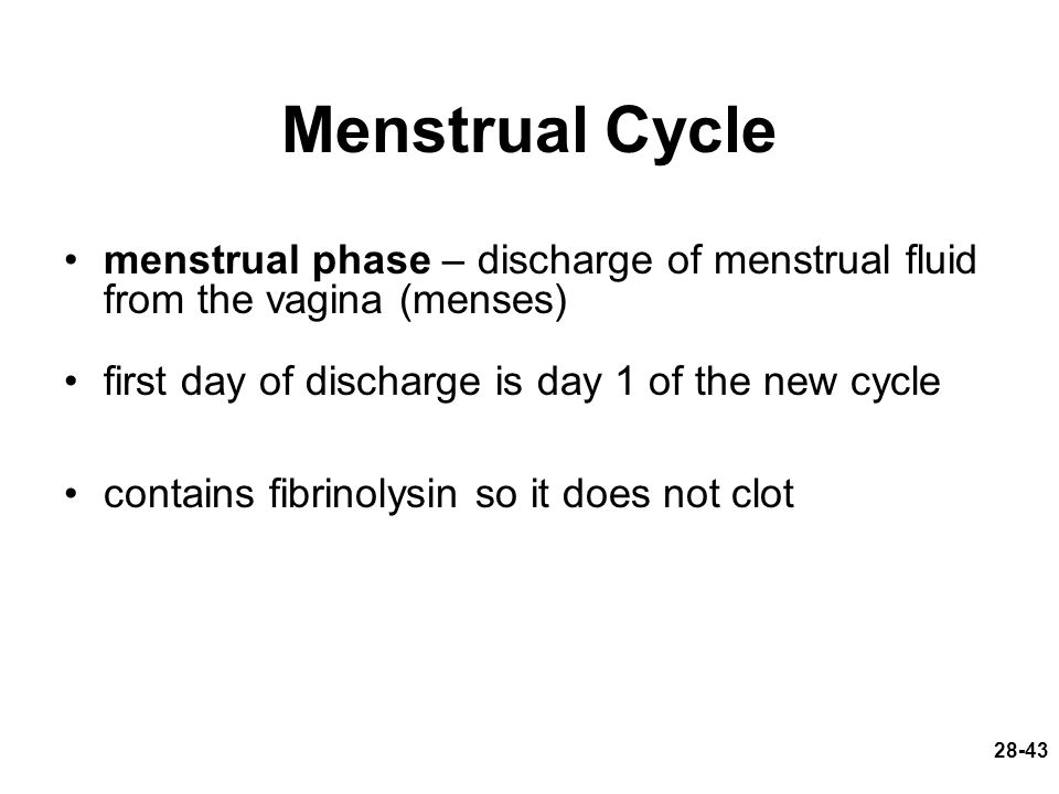 28-43 Menstrual Cycle menstrual phase – discharge of menstrual fluid from the vagina (menses) first day of discharge is day 1 of the new cycle contain