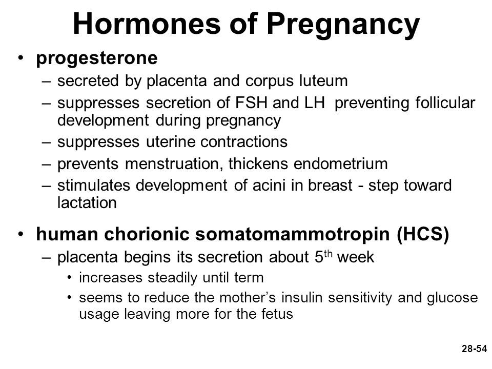 28-54 Hormones of Pregnancy progesterone –secreted by placenta and corpus luteum –suppresses secretion of FSH and LH preventing follicular development