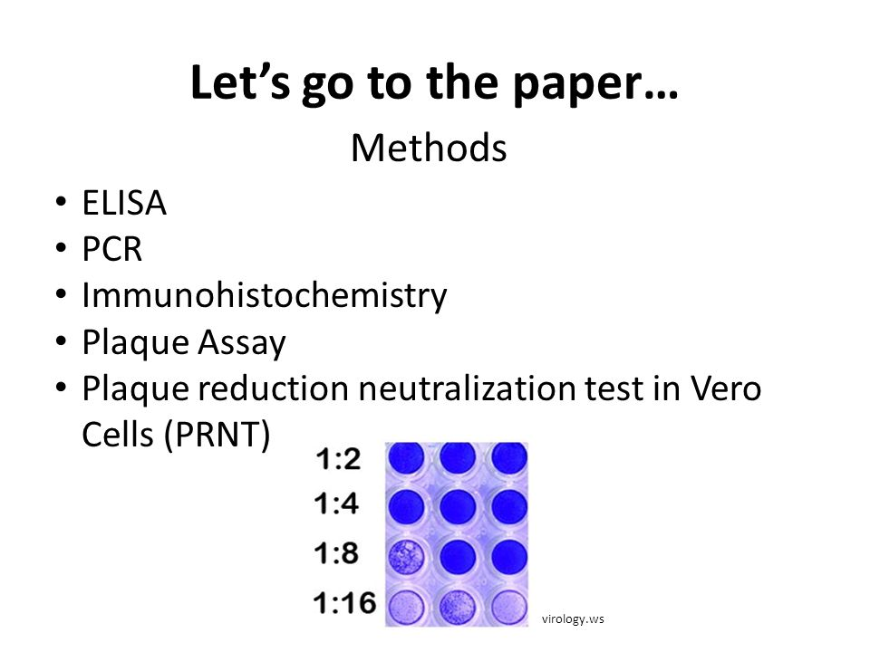 Let's go to the paper… Methods ELISA PCR Immunohistochemistry Plaque Assay Plaque reduction neutralization test in Vero Cells (PRNT) virology.ws