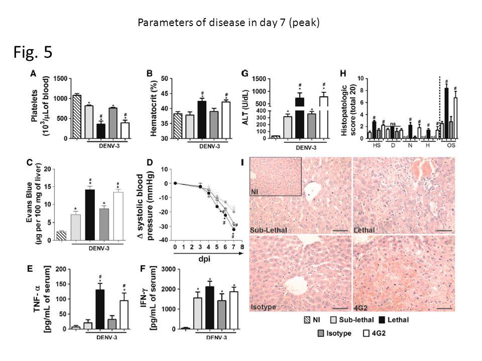 Fig. 5 Parameters of disease in day 7 (peak)