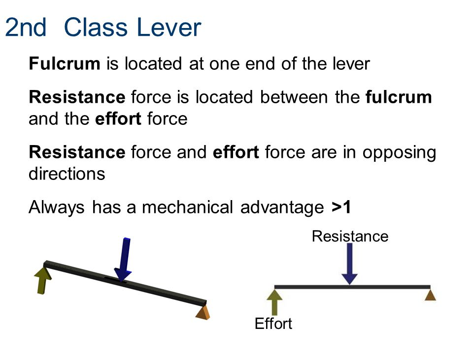 2nd Class Lever Fulcrum is located at one end of the lever Resistance force is located between the fulcrum and the effort force Resistance force and e
