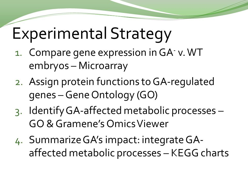 Experimental Strategy 1. Compare gene expression in GA - v.