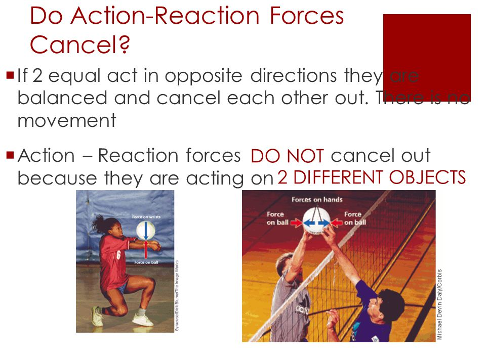Do Action-Reaction Forces Cancel?  If 2 equal act in opposite directions they are balanced and cancel each other out. There is no movement  Action –