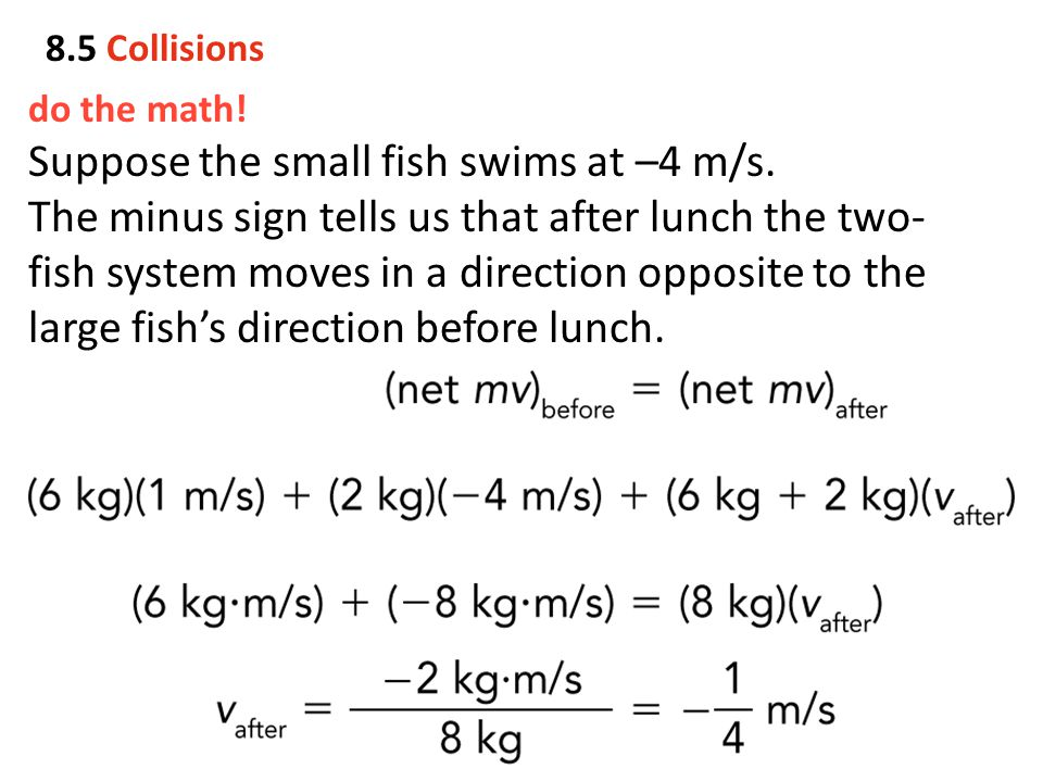 do the math! Suppose the small fish swims at –4 m/s. The minus sign tells us that after lunch the two- fish system moves in a direction opposite to th