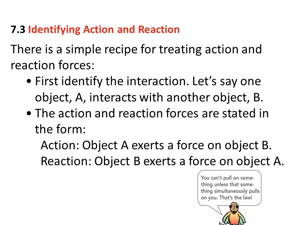 There is a simple recipe for treating action and reaction forces: First identify the interaction. Let's say one object, A, interacts with another obje