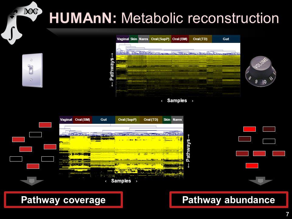 HUMAnN: Metabolic reconstruction 7 Pathway coveragePathway abundance ← Samples → ← Pathways→ VaginalSkinNaresGutOral (SupP)Oral (BM)Oral (TD) ← Pathwa