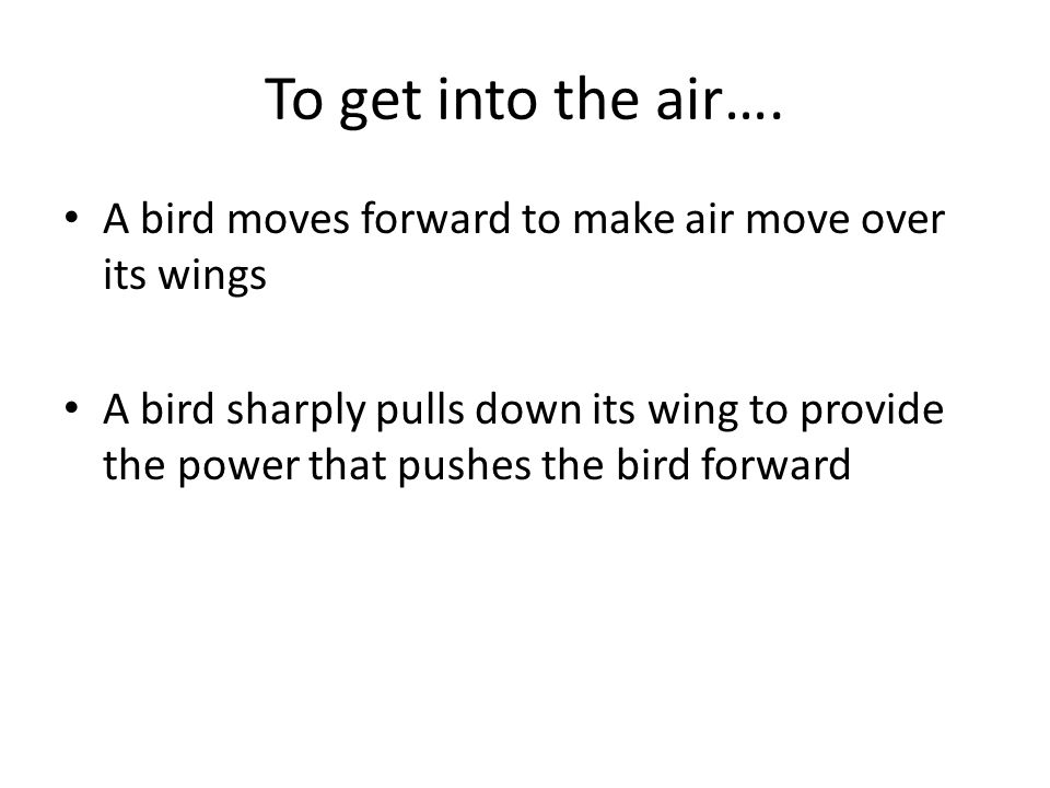 To get into the air…. A bird moves forward to make air move over its wings A bird sharply pulls down its wing to provide the power that pushes the bir