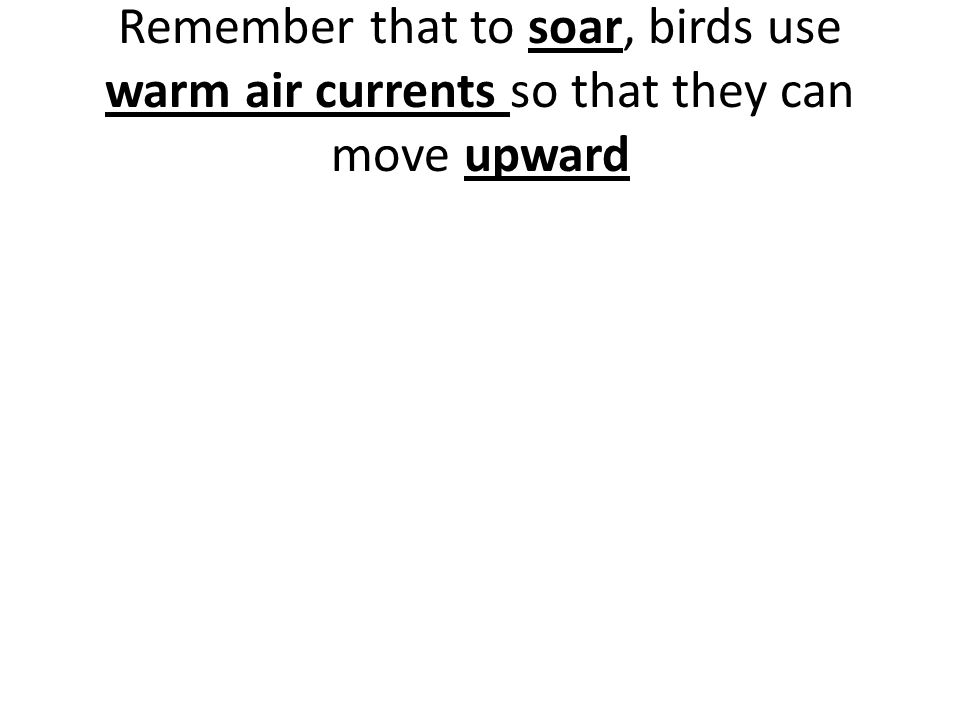 Remember that to soar, birds use warm air currents so that they can move upward