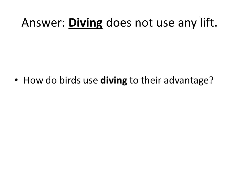 Answer: Diving does not use any lift. How do birds use diving to their advantage?