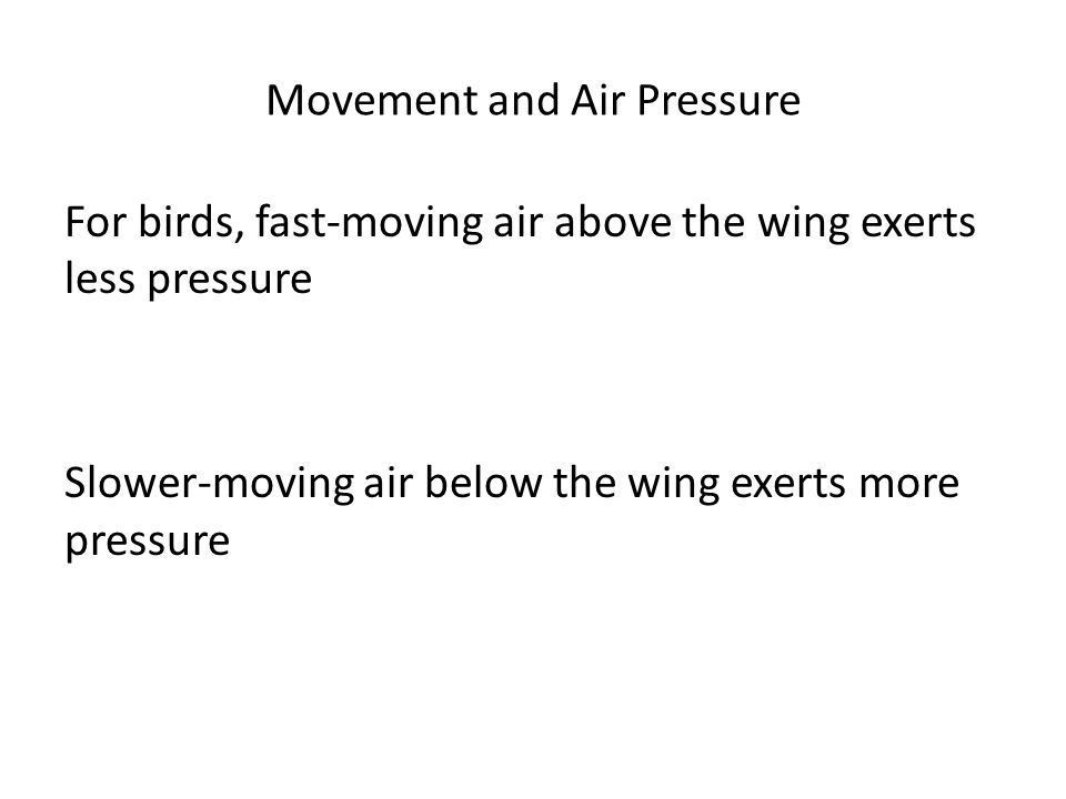 Movement and Air Pressure For birds, fast-moving air above the wing exerts less pressure Slower-moving air below the wing exerts more pressure