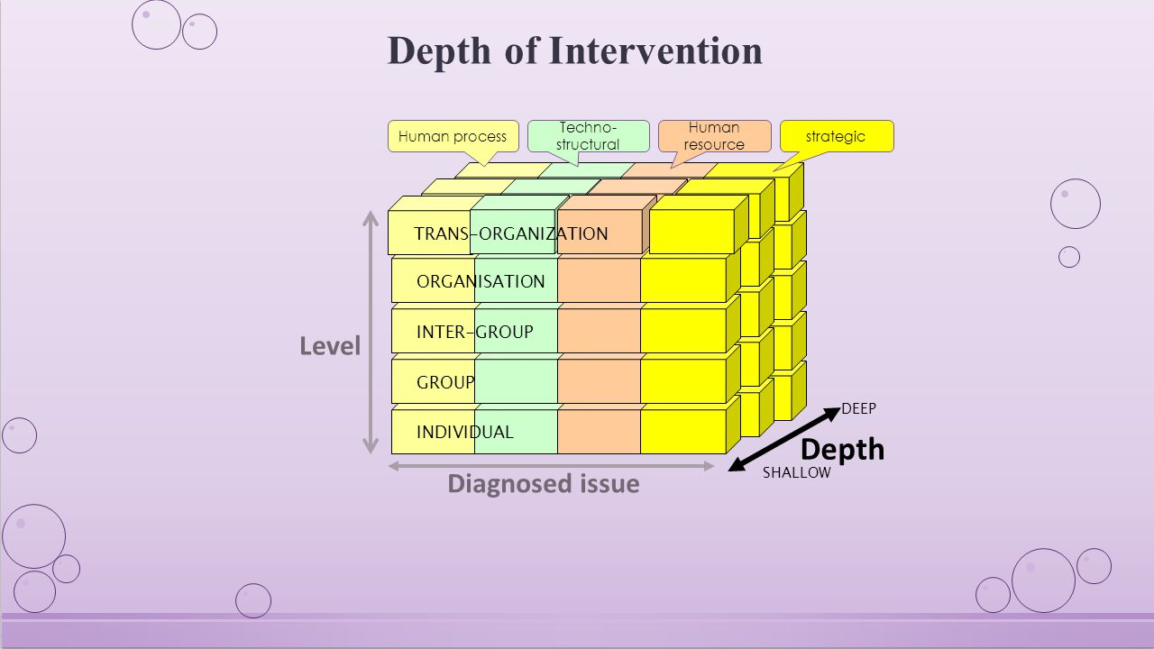 Depth of Intervention DEEP Depth INDIVIDUAL GROUP INTER-GROUP ORGANISATION Level Diagnosed issue SHALLOW TRANS-ORGANIZATION Human process Techno- structural Human resource strategic