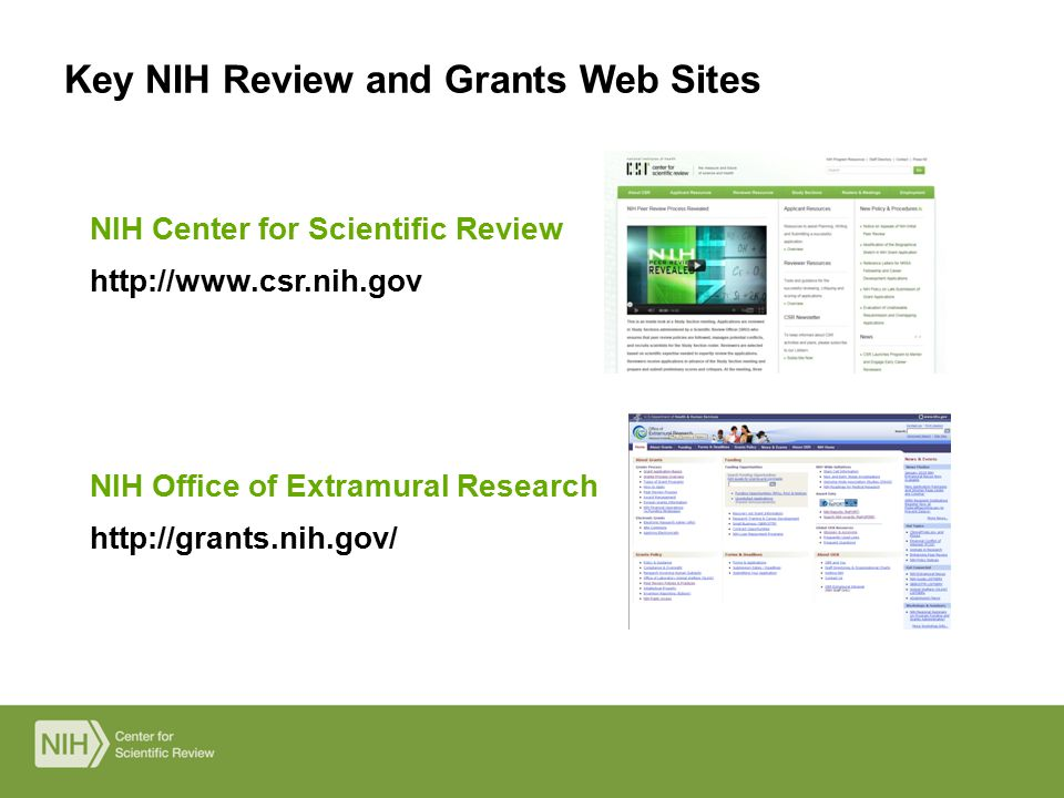 NIH Office of Extramural Research http://grants.nih.gov/ NIH Center for Scientific Review http://www.csr.nih.gov Key NIH Review and Grants Web Sites