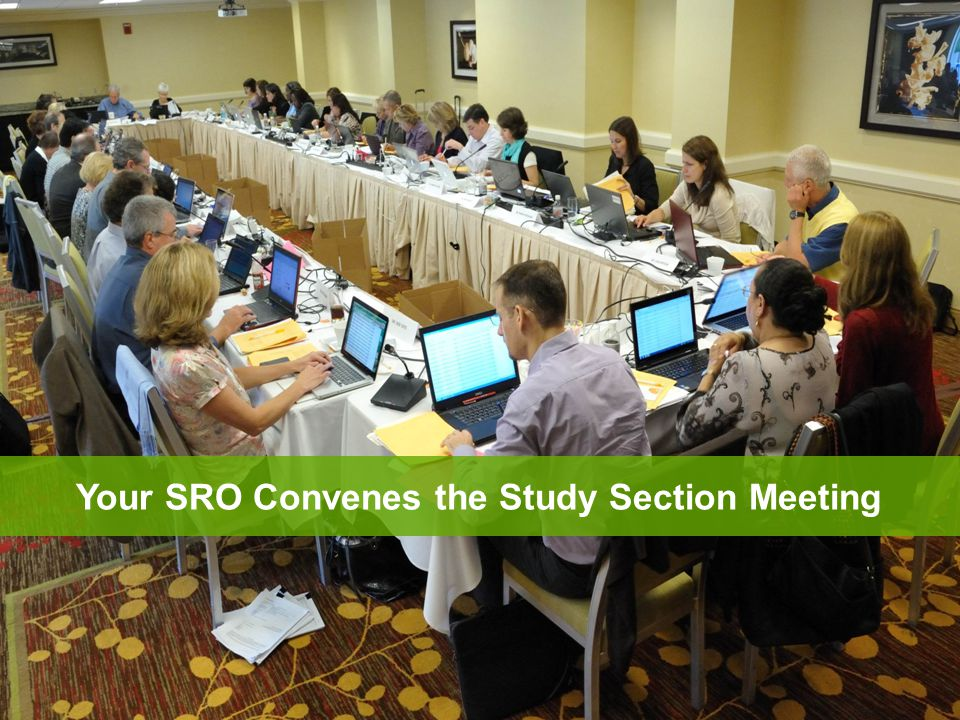 Any member in conflict with an application leaves the room Reviewer 1 introduces the application and presents critique Reviewers 2 and 3 highlight new issues and areas that significantly impact scores All eligible members are invited to join the discussion and then vote on the final overall impact score At the Meeting: Application Discussion