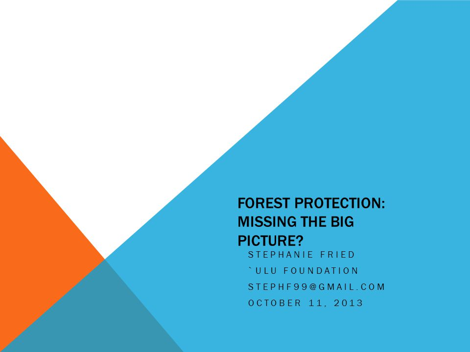 FOREST PROTECTION: MISSING THE BIG PICTURE.