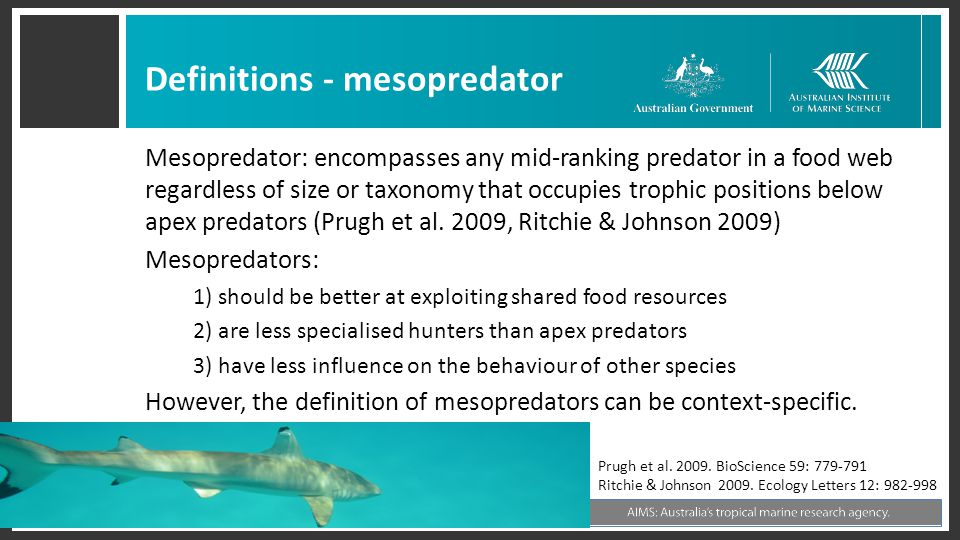 Definitions - mesopredator Mesopredator: encompasses any mid-ranking predator in a food web regardless of size or taxonomy that occupies trophic positions below apex predators (Prugh et al.