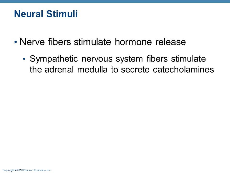 Copyright © 2010 Pearson Education, Inc. Neural Stimuli Nerve fibers stimulate hormone release Sympathetic nervous system fibers stimulate the adrenal