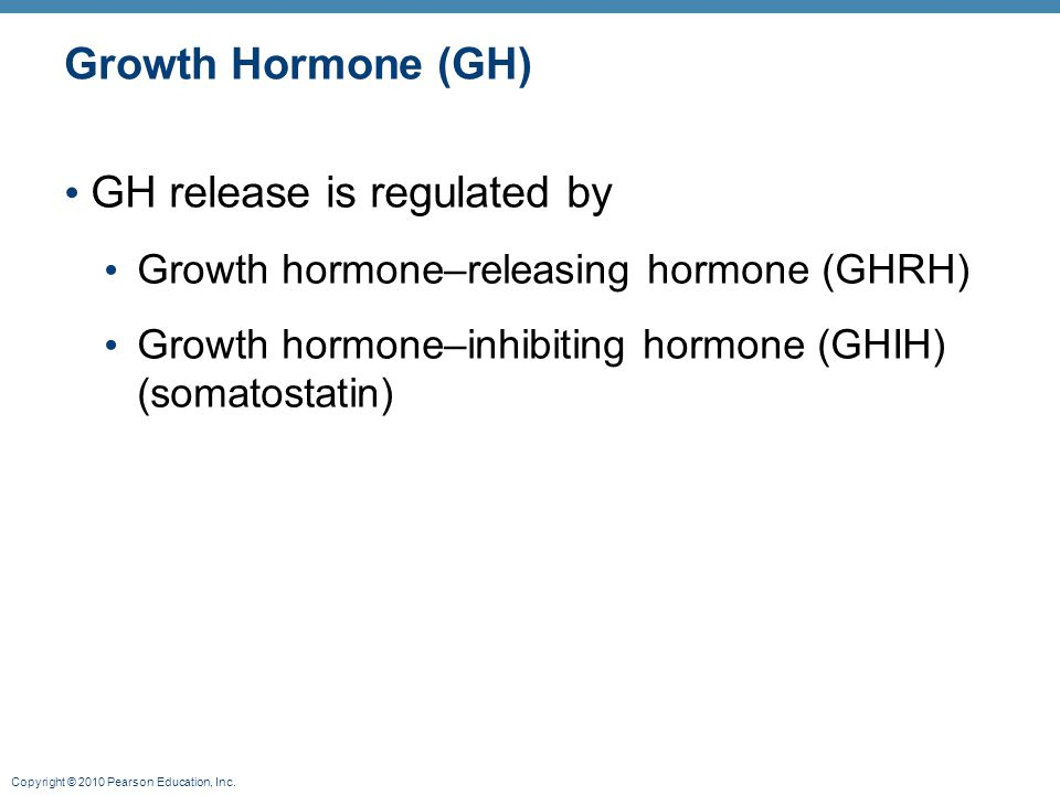 Copyright © 2010 Pearson Education, Inc. Growth Hormone (GH) GH release is regulated by Growth hormone–releasing hormone (GHRH) Growth hormone–inhibit