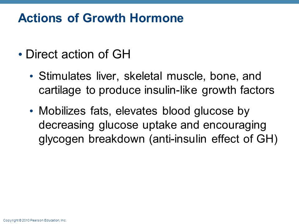 Copyright © 2010 Pearson Education, Inc. Actions of Growth Hormone Direct action of GH Stimulates liver, skeletal muscle, bone, and cartilage to produ