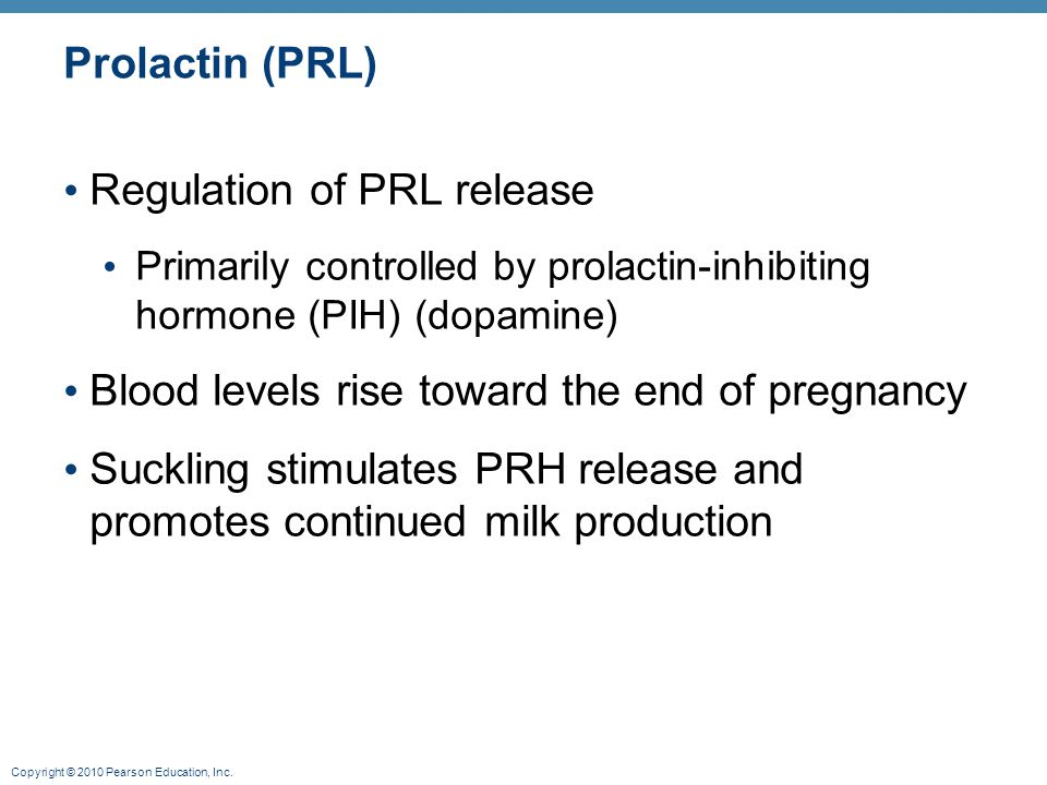 Copyright © 2010 Pearson Education, Inc. Prolactin (PRL) Regulation of PRL release Primarily controlled by prolactin-inhibiting hormone (PIH) (dopamin