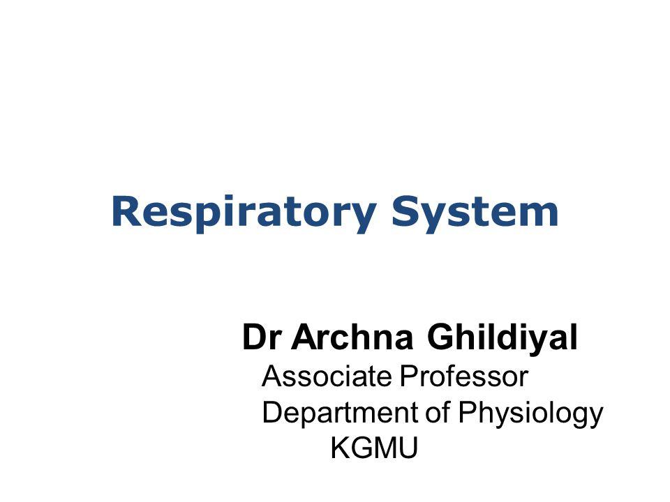 Respiratory System Dr Archna Ghildiyal Associate Professor Department of Physiology KGMU