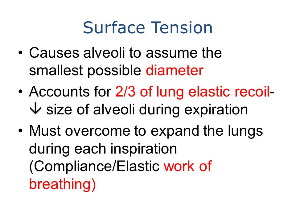 Surface Tension Causes alveoli to assume the smallest possible diameter Accounts for 2/3 of lung elastic recoil-  size of alveoli during expiration M