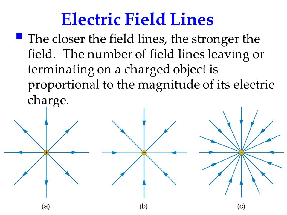 Electric Field Lines  The closer the field lines, the stronger the field. The number of field lines leaving or terminating on a charged object is pro