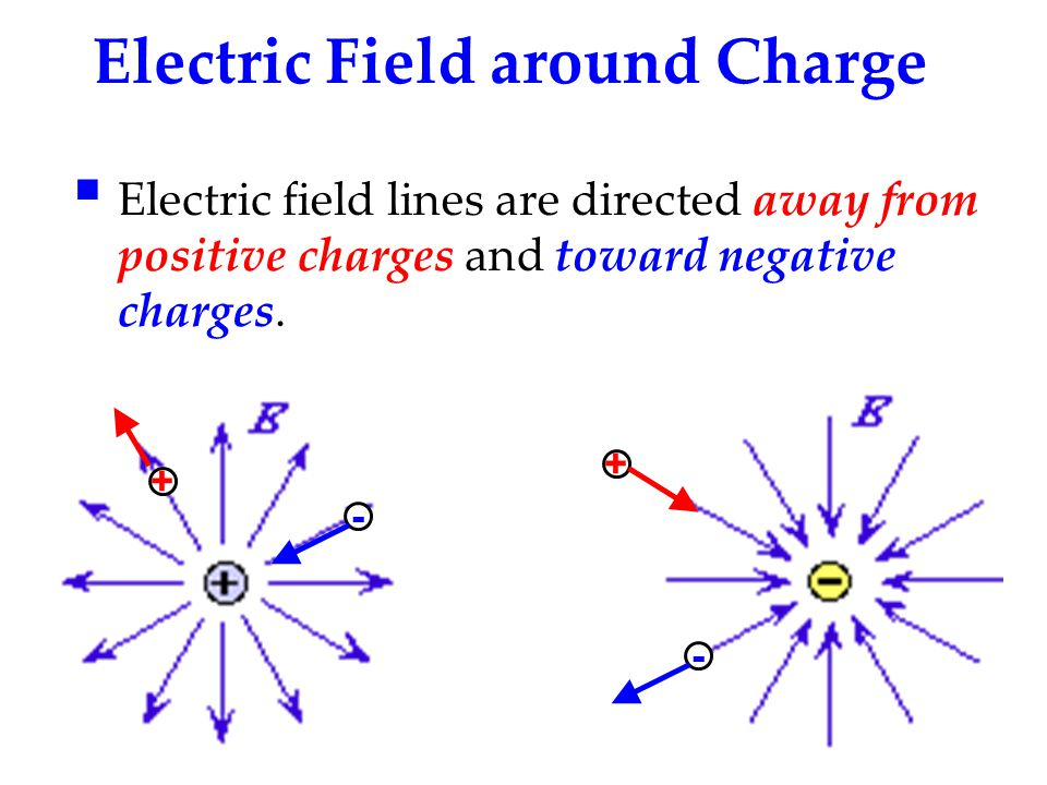 Electric Field around Charge + - + -  Electric field lines are directed away from positive charges and toward negative charges.