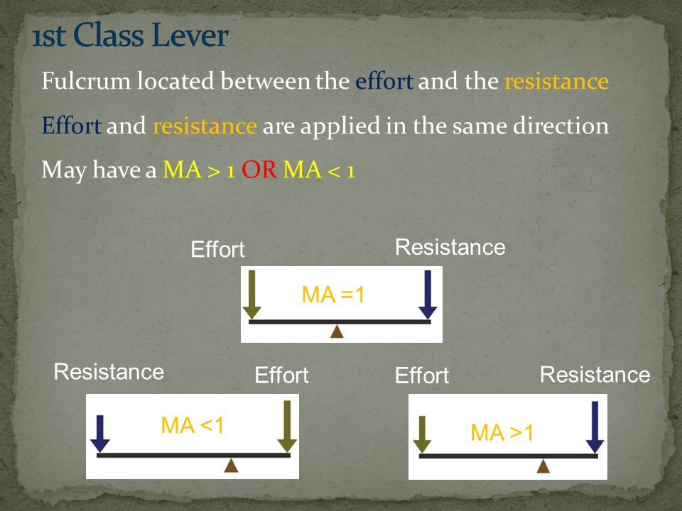 Fulcrum located between the effort and the resistance Effort and resistance are applied in the same direction May have a MA > 1 OR MA < 1 MA =1 Effort Resistance Effort MA <1 Effort Resistance MA >1