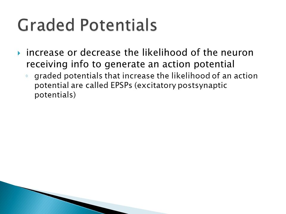  increase or decrease the likelihood of the neuron receiving info to generate an action potential ◦ graded potentials that increase the likelihood of an action potential are called EPSPs (excitatory postsynaptic potentials)