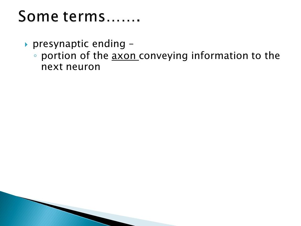  presynaptic ending – ◦ portion of the axon conveying information to the next neuron