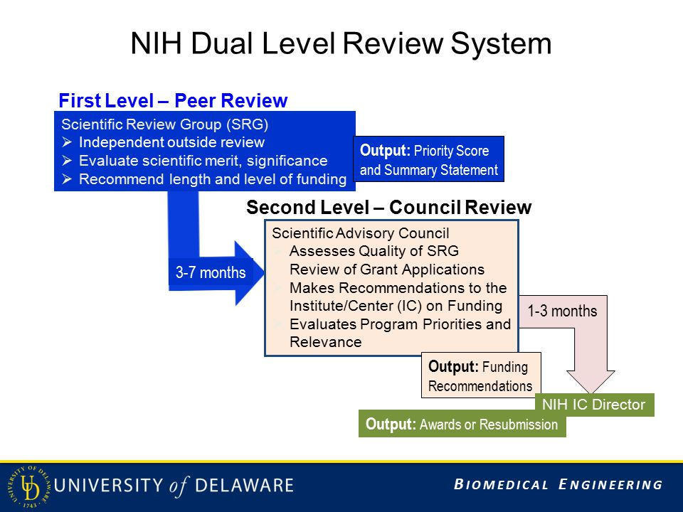 B IOMEDICAL E NGINEERING NIH Dual Level Review System Output: Awards or Resubmission 3-7 months 1-3 months First Level – Peer Review Scientific Review