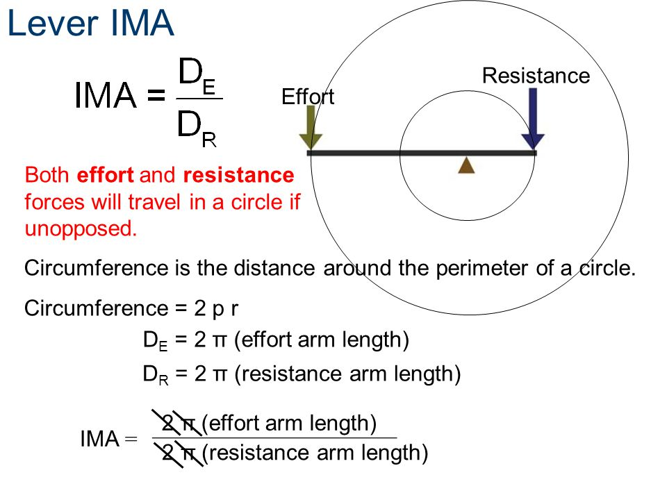 Lever IMA Effort Resistance D E = 2 π (effort arm length) Both effort and resistance forces will travel in a circle if unopposed. Circumference is the