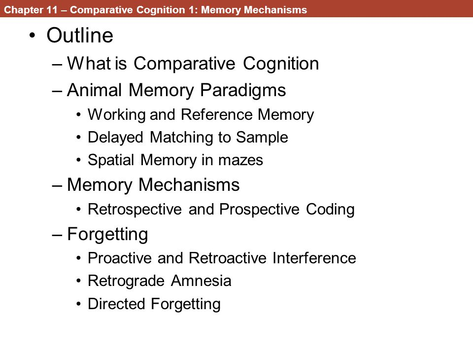 Working Memory and Reference Memory –another distinction that has received a lot of research interest in comparative cognition Reference Memory –Long-term retention of information necessary for the successful use of incoming and recently acquired information The rules of the game Working Memory –Short-term information What did I just do.