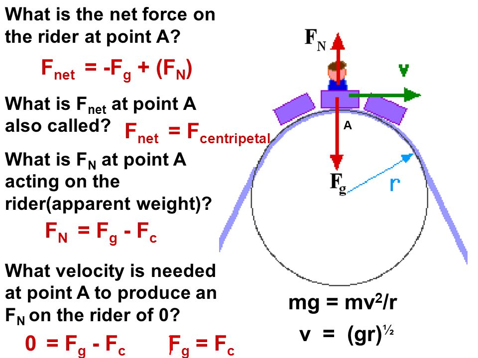 What is the net force on the rider at point A? What is F net at point A also called? What is F N at point A acting on the rider(apparent weight)? What