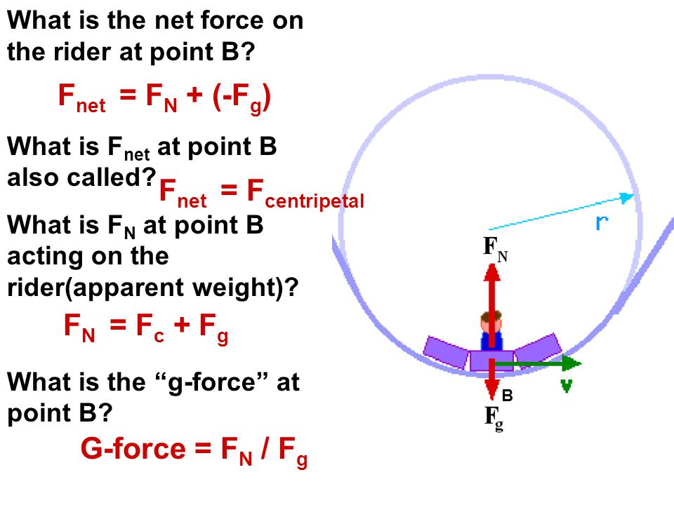 What is the net force on the rider at point B? What is F net at point B also called? What is F N at point B acting on the rider(apparent weight)? What