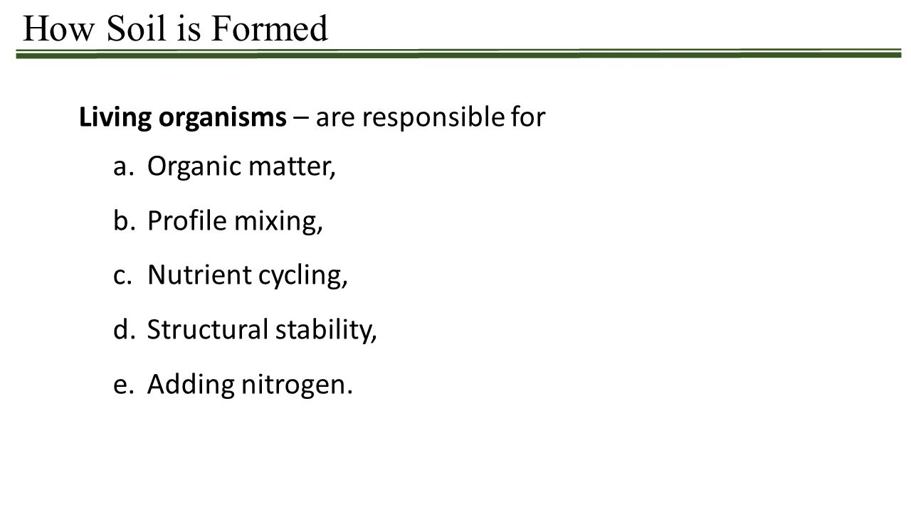 How Soil is Formed Living organisms – are responsible for a.Organic matter, b.Profile mixing, c.Nutrient cycling, d.Structural stability, e.Adding nit