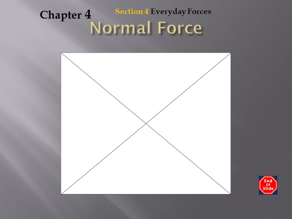 Chapter 4 Section 4 Everyday Forces