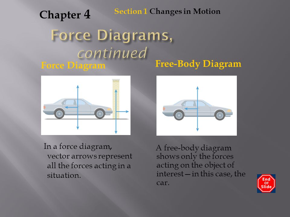 Chapter 4 In a force diagram, vector arrows represent all the forces acting in a situation. Section 1 Changes in Motion A free-body diagram shows only
